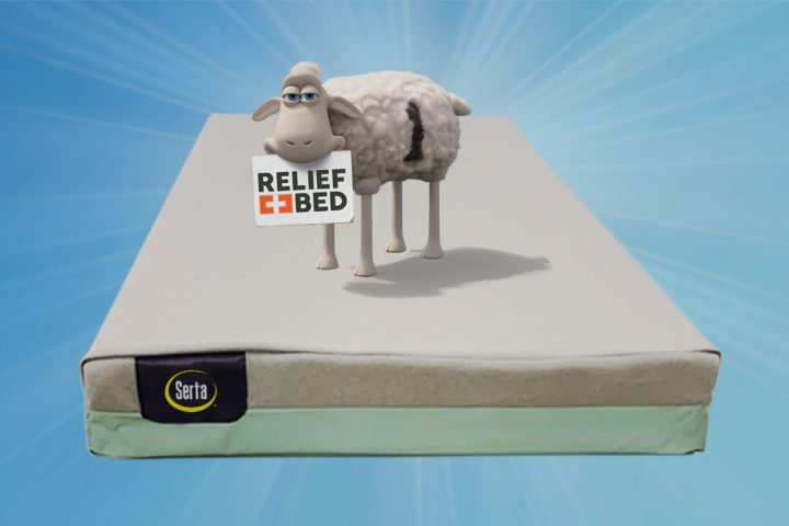 Serta-Relief-Bed-sheep-img